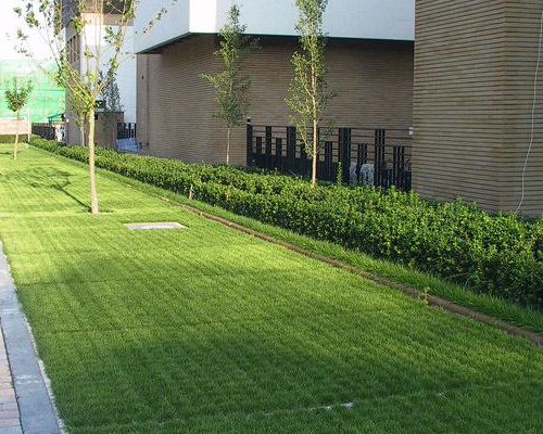 透水植草地坪