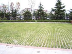 福州透水植草地坪